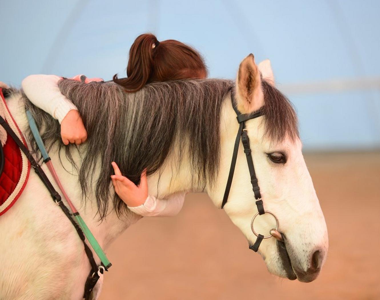 Beykoz'da Atla Terapi Dönemi Başlıyor