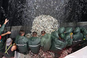 """Balıkçılar Beykoz'da """"Virabismillah"""" Dedi"""